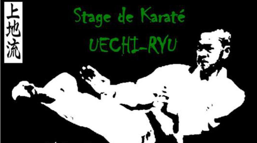 Stage Uechi Ryu les 28 et 29 Avril à Cugnaux (31)